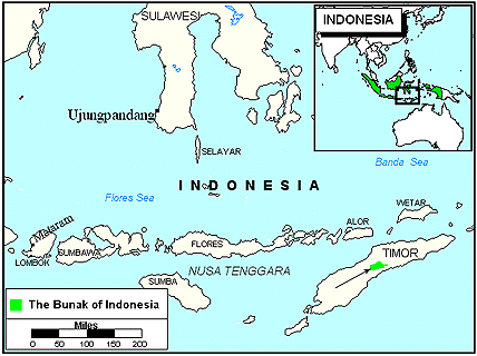 Bunak, Mare in Indonesia map