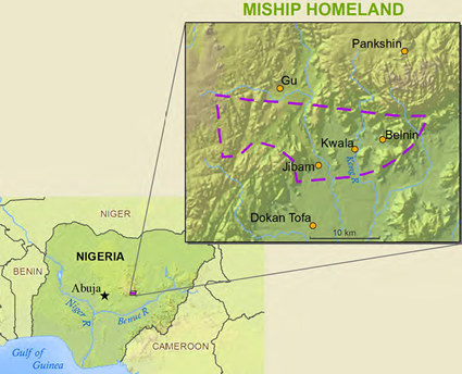 Chip in Nigeria map