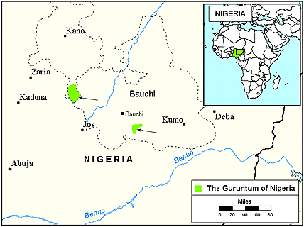 Guruntum in Nigeria map