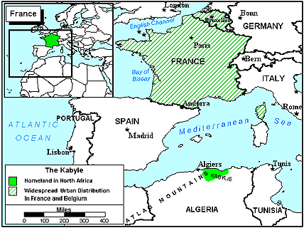 Berber, Kabyle in France map