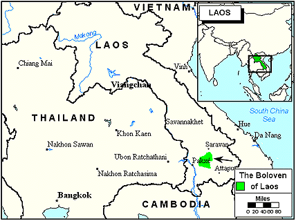 Laven in Laos map