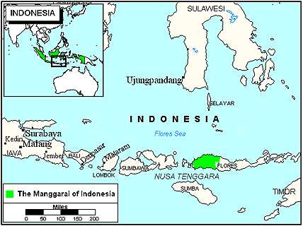 Manggarai in Indonesia map
