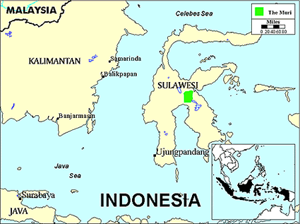 Mori Atas in Indonesia map