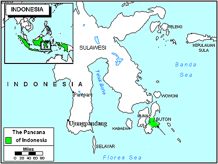 Pancana in Indonesia map
