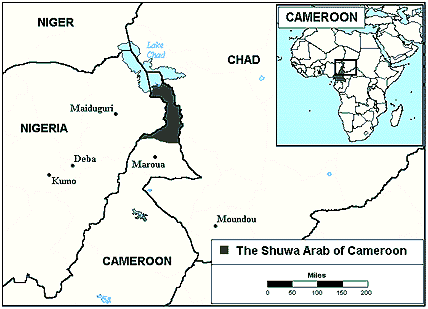 Baggara, Shuwa Arab in Cameroon map