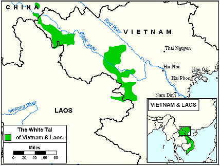 Tai Kao in Laos map