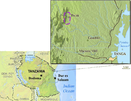 Dhaiso in Tanzania map
