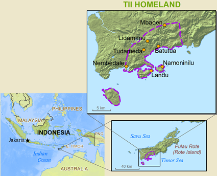 Rotinese, Tii in Indonesia map